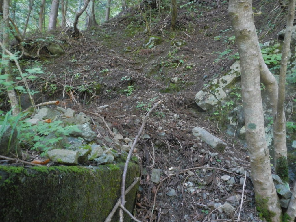 堰堤の上の踏み跡
