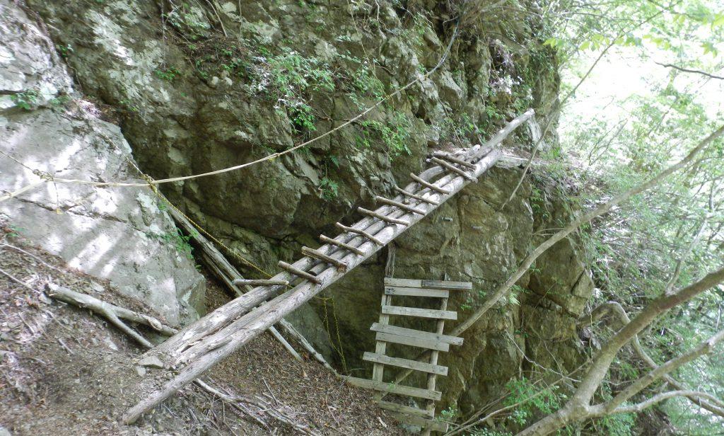 傾いた丸木橋
