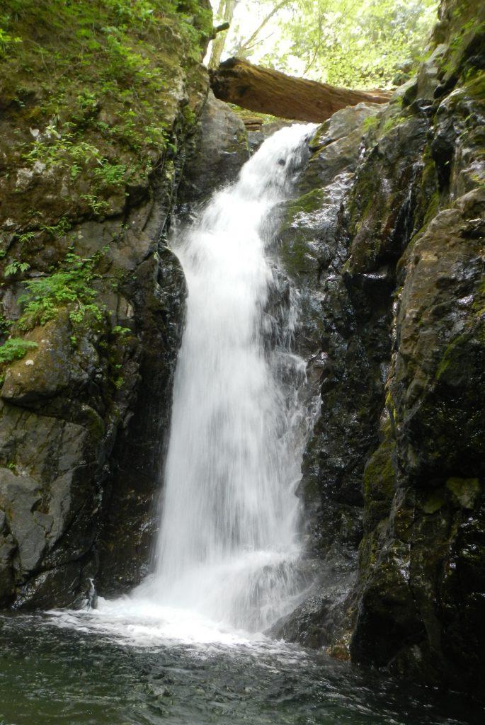 バケモノ滝