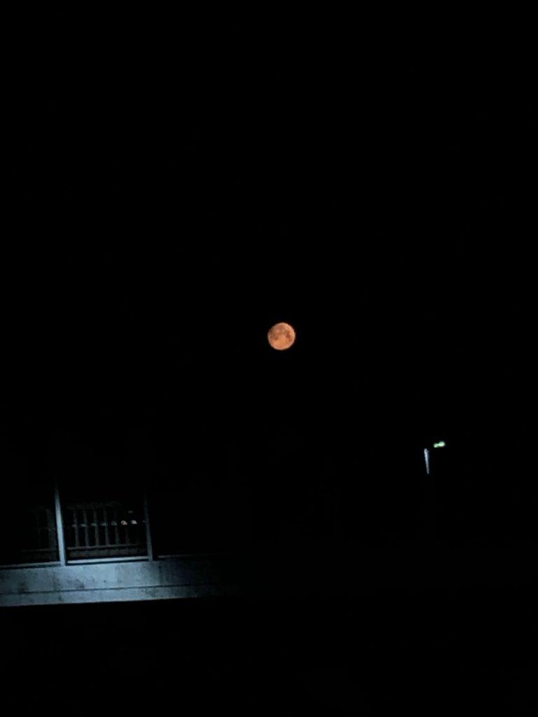 首都高速狩場線の跨線橋のから赤い月を望む