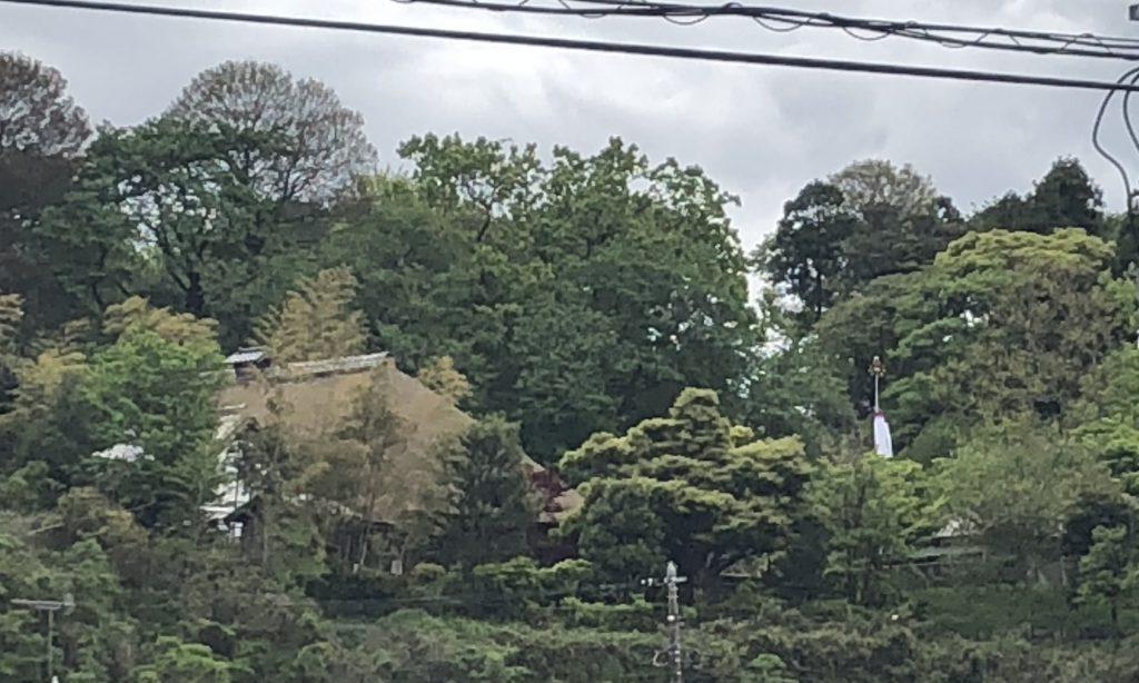 鯉のぼりがある茅葺屋根のお屋敷